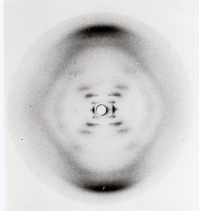 "Rosalind Franklin and Raymond Gosling, ""Photo 51"" (courtesy King's College London)"