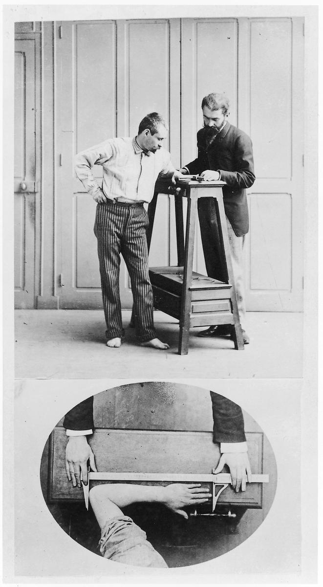 <p>Measurement of the cubit (from the tip of the middle finger to the elbow), from Alfonse Bertillon's photo album, exhibited at the 1893 World's Columbian Exposition in Chicago, Collection: National Gallery of Canada, Ottawa</p>